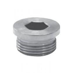 Bouchon avec empreinte hexagonale creuse,Filet Gaz, Inox A4 /AISI 316